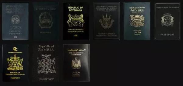 BLack-Passport