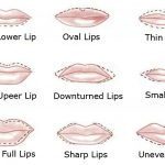 Lips-shapes