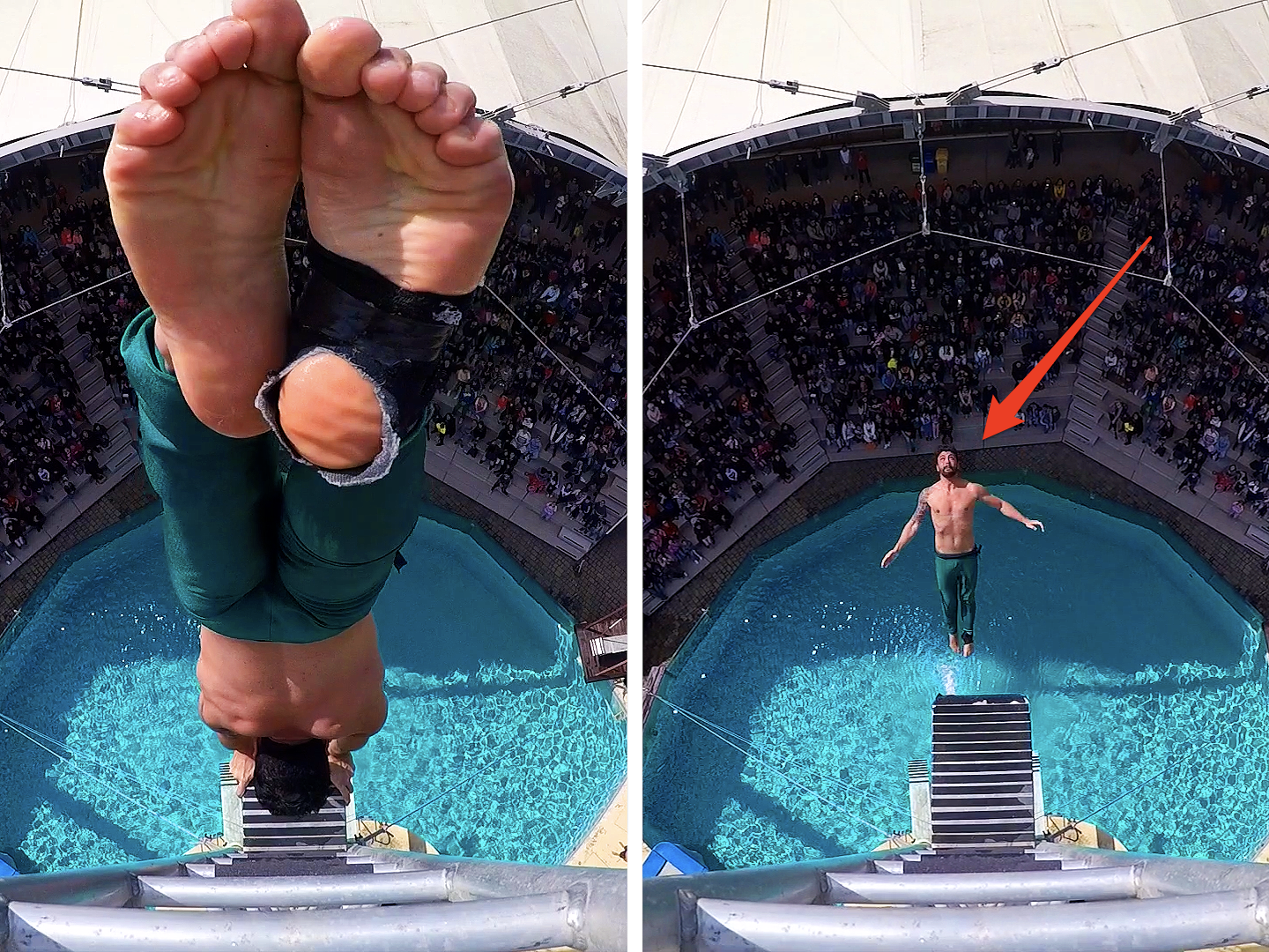 Professional Diver High Dives in front of audience