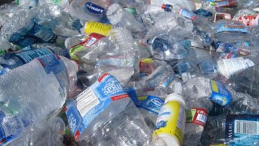 Bacteria that eats plastic found in Zambales